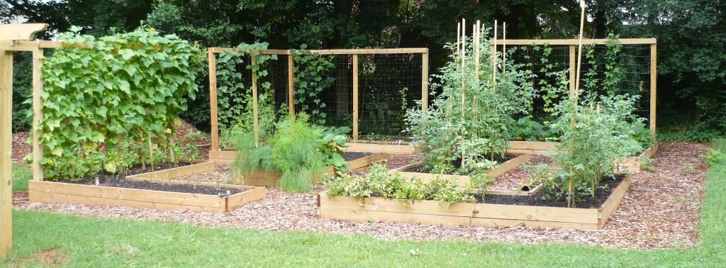 Instant Organic Garden : Survivalist gardens instant organic garden