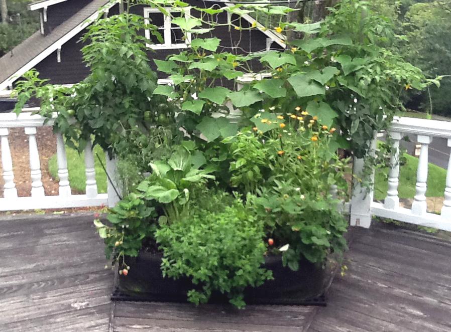 Garden Design Garden Design with Plan Your Deck Garden Patio