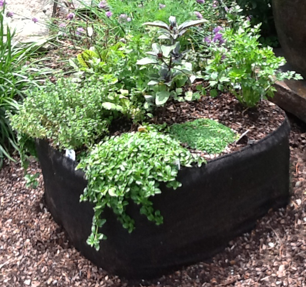 raised bed containers 2